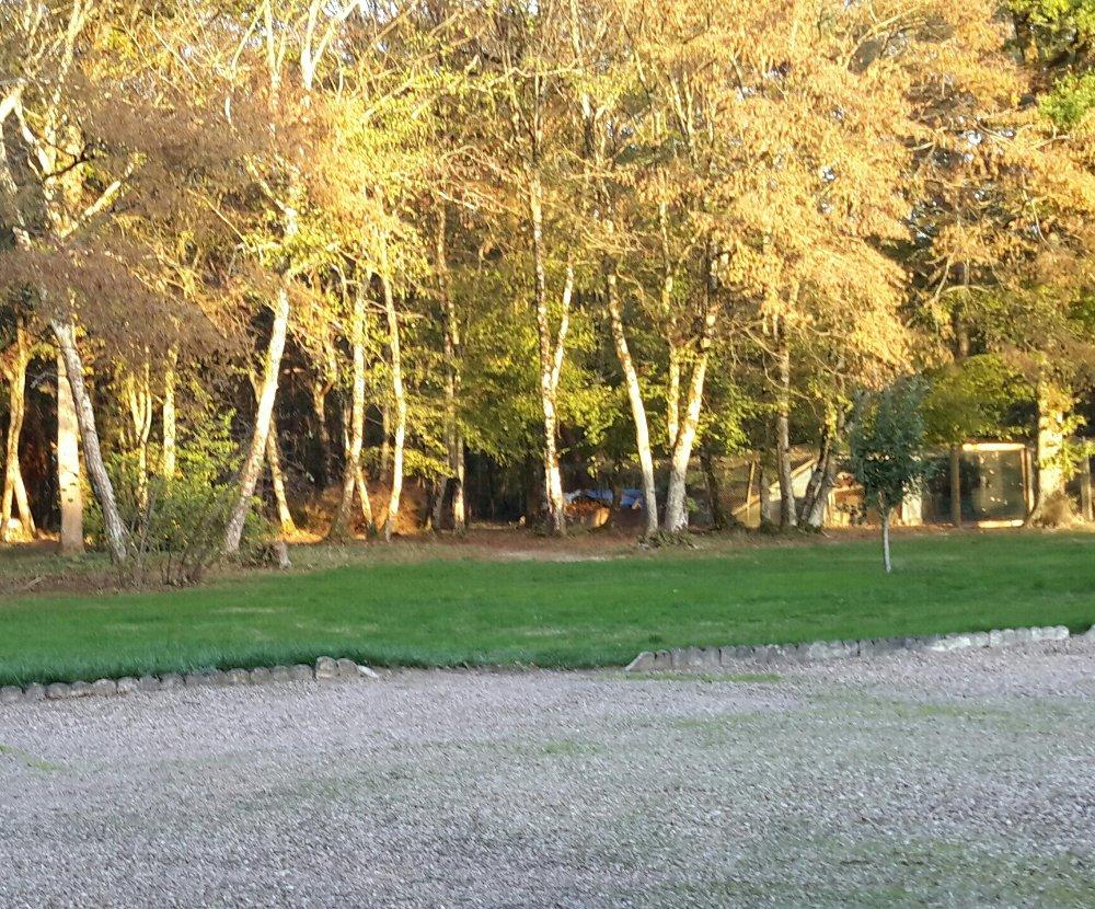 Aire camping-car à Charrin (58300) - Photo 2